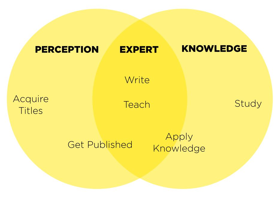 Venn Diagram showing expert at the intersection of perception and knowledge